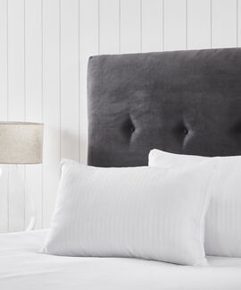 Comfort Living Pillow Pack Of 2 43Cmx69Cm