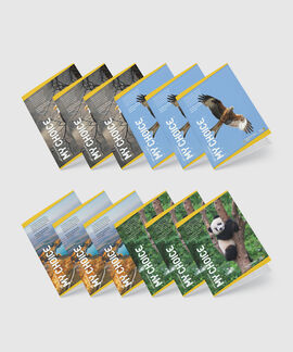 My Choice A4 60 GSM 172 Pages Pack Of 12 Notebooks